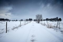 Veien i Oterhalsen - vinter