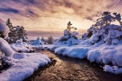 Vinter i Brevika