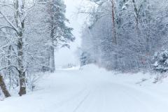 Vinterveien - Tangen