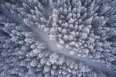Aukraskogen- Dronebilde - Vinter