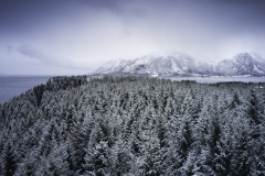 Aukraskogen - Vinter - Drone - 1
