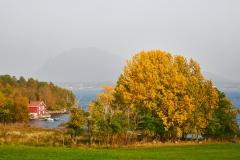 Eikrem - Høstfarger