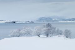 Vinterlandskap - Eikrem - 12