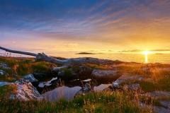 Rinarøya - Solnedgang - Drivved