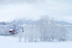 Vinterlandskap - Eikrem - 13