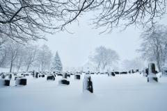 Vinter på Kirkegarden
