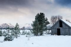 Vinter ved Prestesjåen