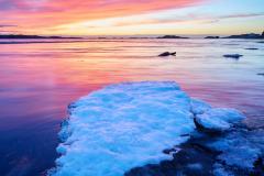 Røaleira - is i solnedgang