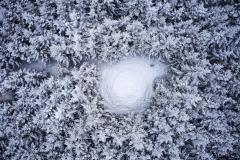 Aukraskogen - Vinter - Drone - 2