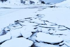 Vinter I Brunes : 2