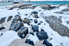 Vinter i Brunes