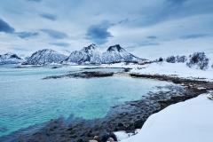 Vinterlandskap i brunes